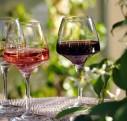 Je craque pour le vin de provence